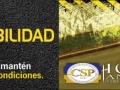 billboard_palmas_242x858-02