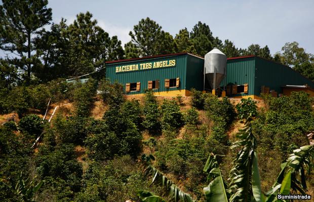 20150310-hacienda-tres-angeles-castaner